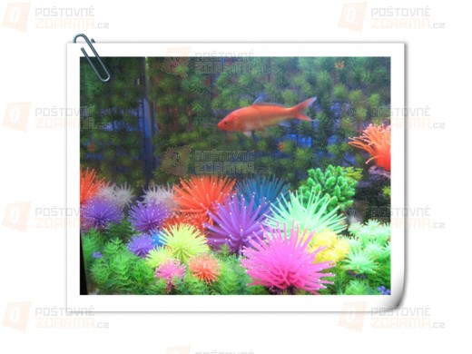 Dekorace do akvária korál - 6 barev